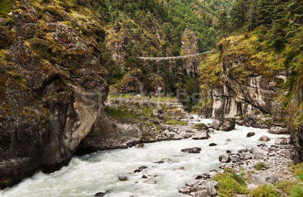 橋 方法 ヒマラヤ山脈 ネパール 木材 森林 ストックフォト © Arsgera