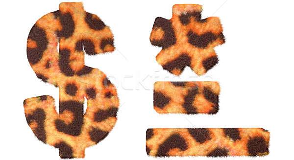 Leopard fell dollar symbol, dash, hyphen and asterisk Stock photo © Arsgera