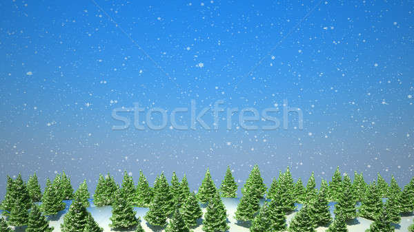 Firtree forest landscape during snowfall  Stock photo © Arsgera
