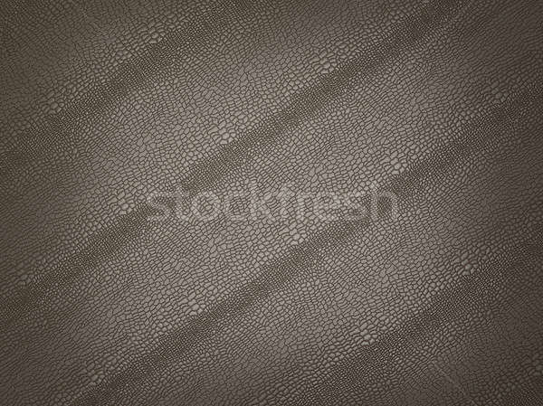Alligator skin with stripes: useful as background or texture Stock photo © Arsgera