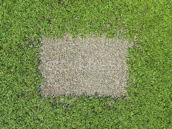 среде зеленая трава кадр гравий средний Сток-фото © Arsgera