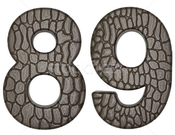 Alligator skin font 8 9 digits  Stock photo © Arsgera