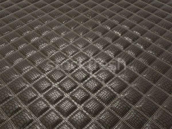 моде аллигатор черный кожи квадратный Сток-фото © Arsgera