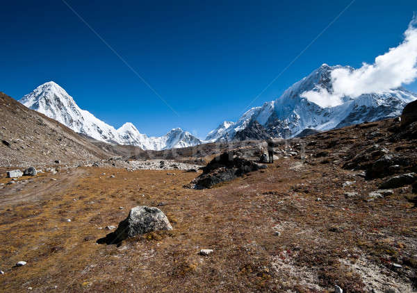 Hiking in Himalayas: Pumori summit and mountains Stock photo © Arsgera