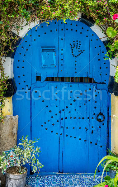 Old Blue door with arch from Sidi Bou Said  Stock photo © Arsgera