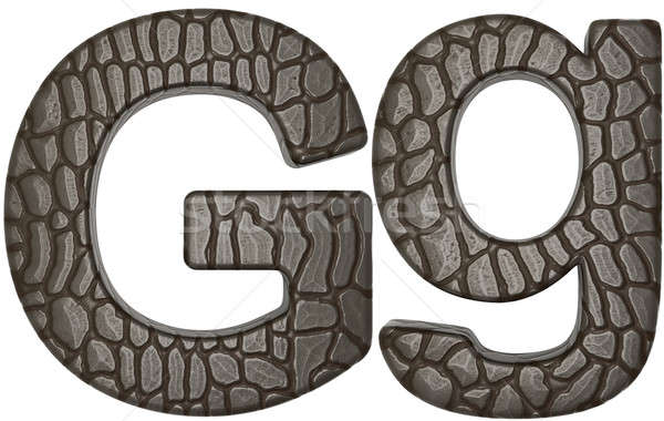 Alligator skin font G lowercase and capital letters Stock photo © Arsgera