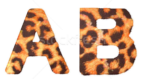 Leopard fur A and B letters isolated Stock photo © Arsgera