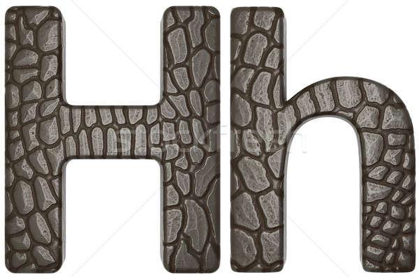 Alligator Haut Schriftart Briefe isoliert weiß Stock foto © Arsgera