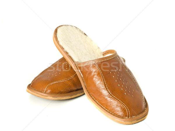 Men's house slippers isolated  Stock photo © Arsgera