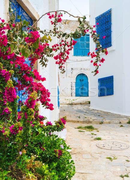 Rua Tunísia viajar cena azul urbano Foto stock © Arsgera
