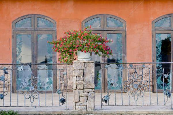 Casa plantas varanda flor casa janela Foto stock © art9858