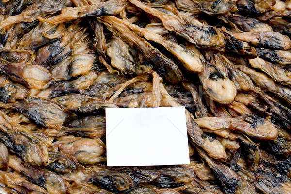 Shellfish : Angle's wing, Oriental angel's wing,Pholas orientali Stock photo © art9858