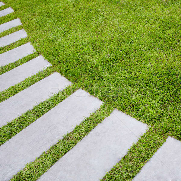Walkway on green grassy Stock photo © art9858