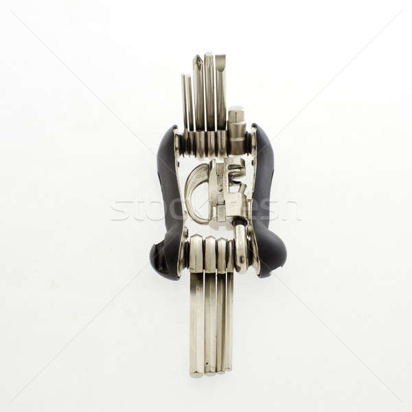 screwdrivers multi-tool, isolated on white background Stock photo © art9858