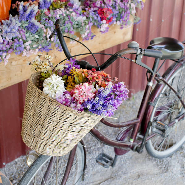 brown vintage bicycle with flowers on thered wall. Stock photo © art9858