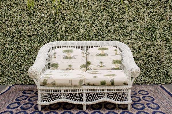 Сток-фото: диван · ковер · зеленый · небольшой · дерево