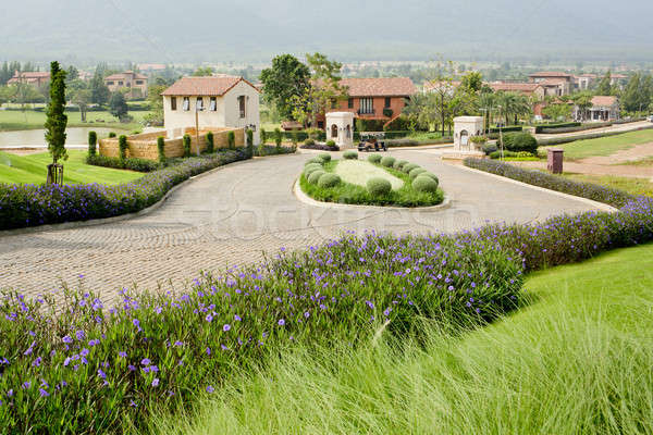 Nice houses with beautiful garden and walk way in small villege Stock photo © art9858
