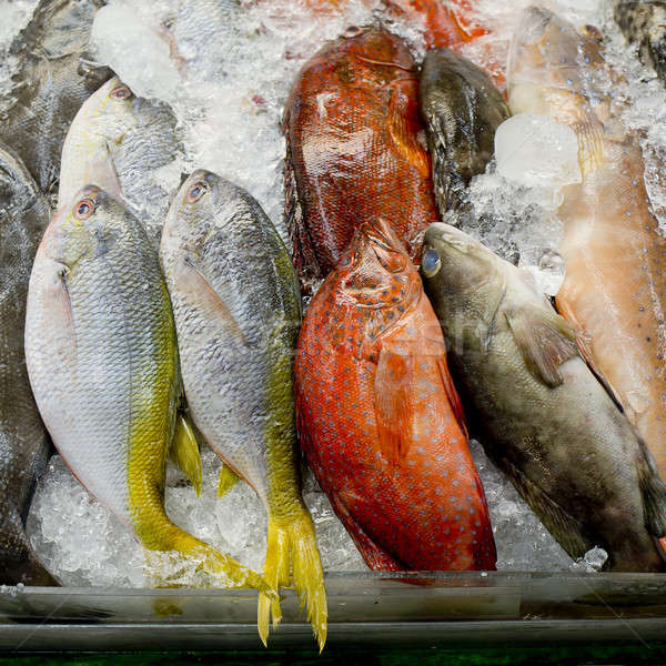 variety of fresh fish seafood in market closeup background Stock photo © art9858