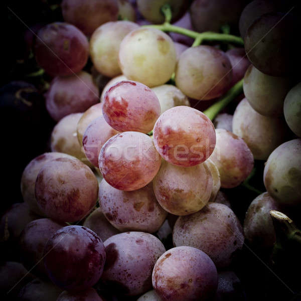 Kırmızı üzüm şarap yaprak arka plan yeşil Stok fotoğraf © art9858