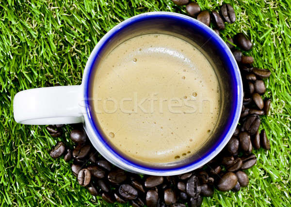 Close-up of cappuccino foam on grass Stock photo © art9858