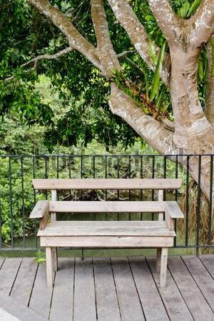 Houten bank terras groene boom ruimte Stockfoto © art9858