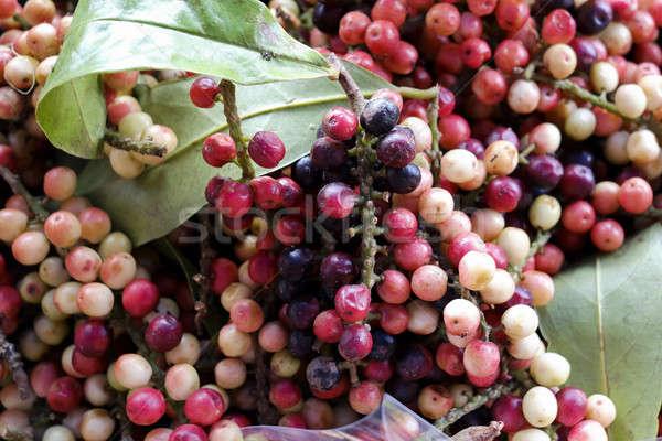 Thai naam regio Thailand vruchten Stockfoto © art9858