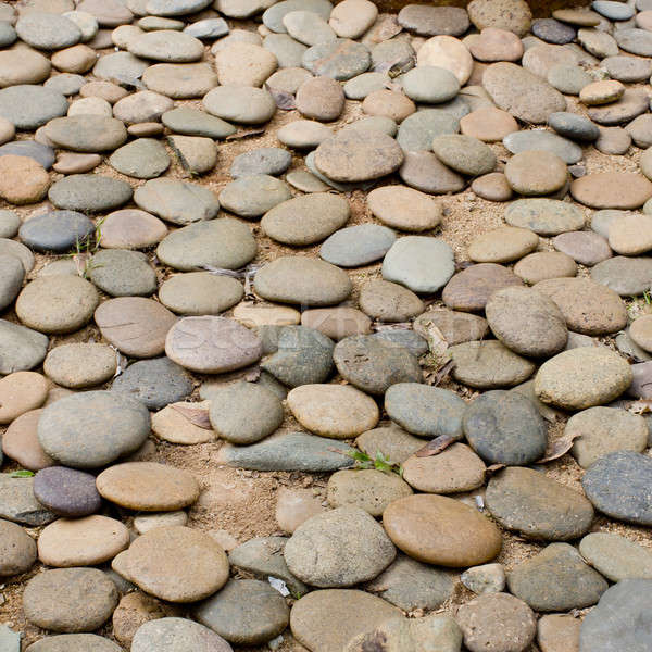 Close up gravel stone pathway in the park. Stock photo © art9858