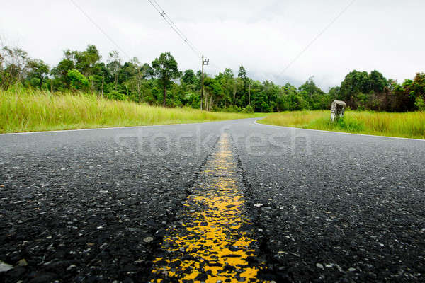 Stock photo: Winding Road Through a Forest