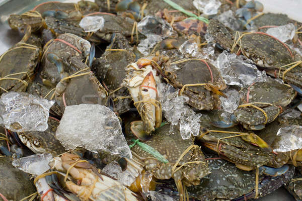 Raw blue crab - ready to sell in market. Stock photo © art9858