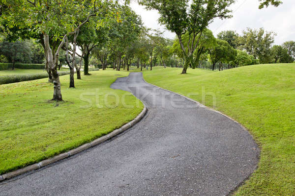 Road in the park Stock photo © art9858