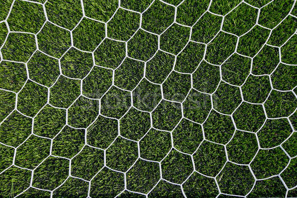 Fútbol neto hierba verde deporte verano equipo Foto stock © art9858