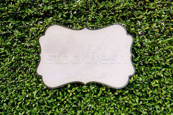 Blank board against green leaves texture background. Stock photo © art9858