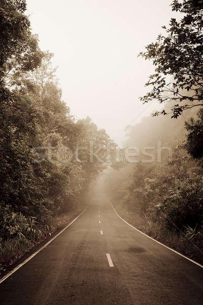út erdő szmog autó fa tájkép Stock fotó © art9858