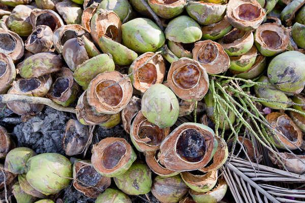 Fresh Coconuts with leaves background Stock photo © art9858