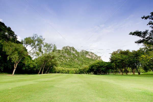 Green grass on a golf field Stock photo © art9858