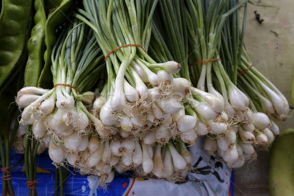 freshly harvested spring onions ready to sell at market Stock photo © art9858