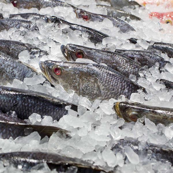 Vers ijs vis markt voedsel Stockfoto © art9858