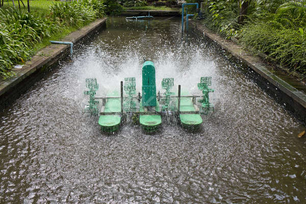 электрических турбина рост кислород отходов воды Сток-фото © art9858