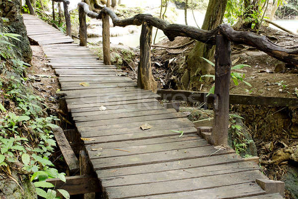 walkway of wooden planks through the forest Stock photo © art9858