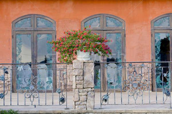 дома растений балкона цветок домой окна Сток-фото © art9858