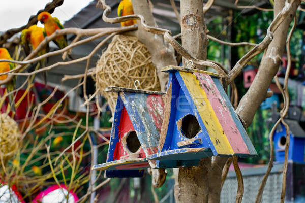 colorful bird house. Stock photo © art9858