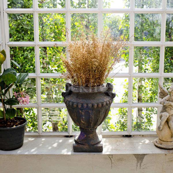 Vase and dry flowers decoration Stock photo © art9858