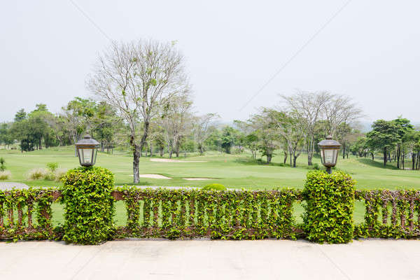 Terrace with vines and lattern Stock photo © art9858
