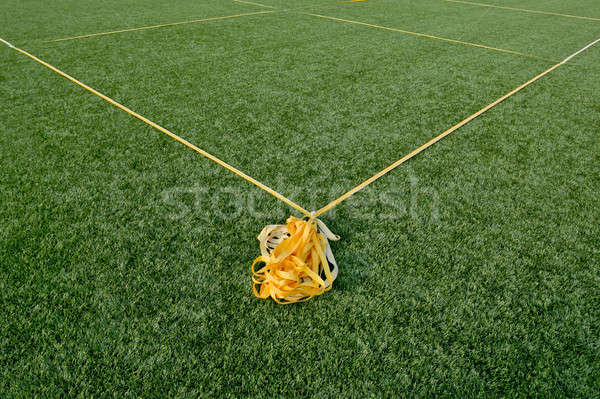 Corner boundary markings of grass soccer field Stock photo © art9858