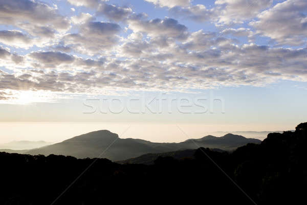 layers of mountains and fog at sunrise Stock photo © art9858