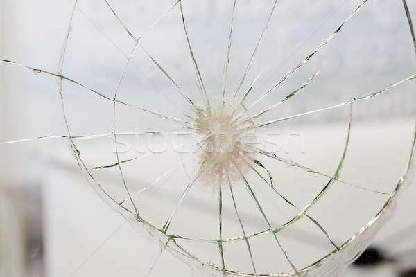 Stock photo: spider web texture background,cobweb