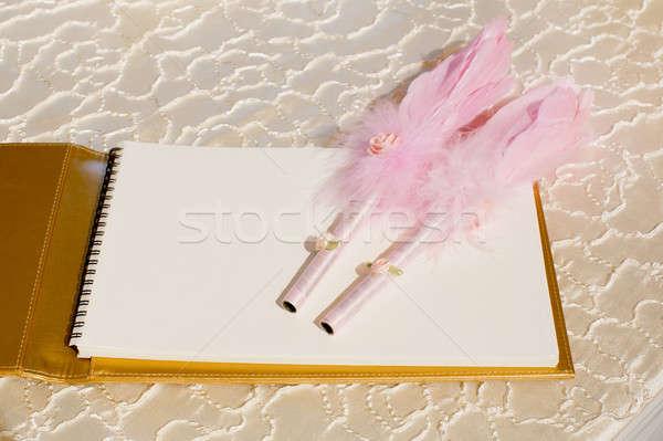 Fotó esküvő toll toll vendégkönyv nő Stock fotó © art9858