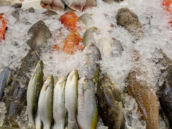 fresh fish on ice at the market in Thailand Stock photo © art9858