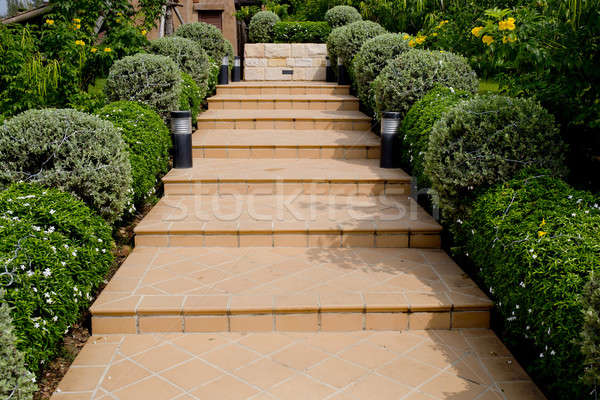 Orange Tiles Stair Steps Leading up to house with small trees. Stock photo © art9858