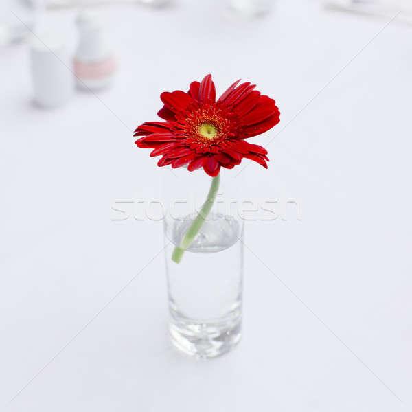 Um belo flor vidro vaso mesa de café Foto stock © art9858
